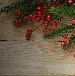 Holiday-Background_640x648-01.jpg